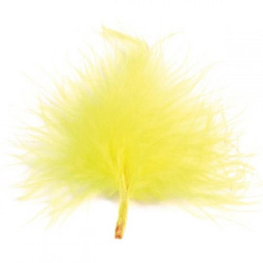 Plumes jaunes 7cm.