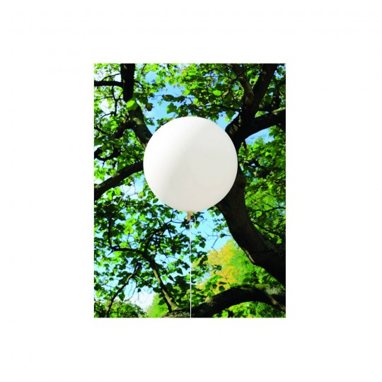 Ballon géant 40 cm ou 60 cm vendu à l'unité