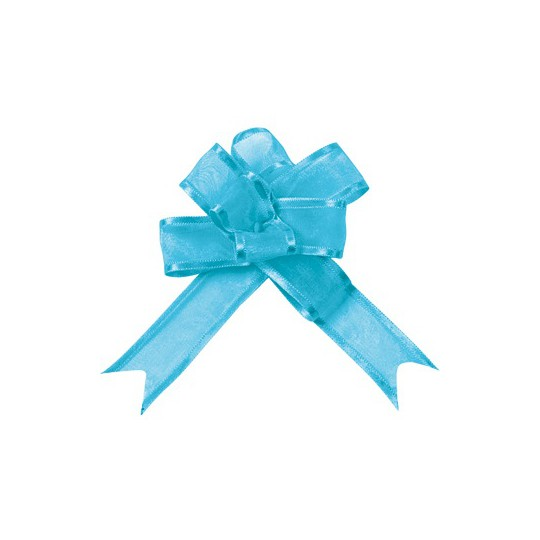 Noeud à tirer organza bleu turquoise 20 mm