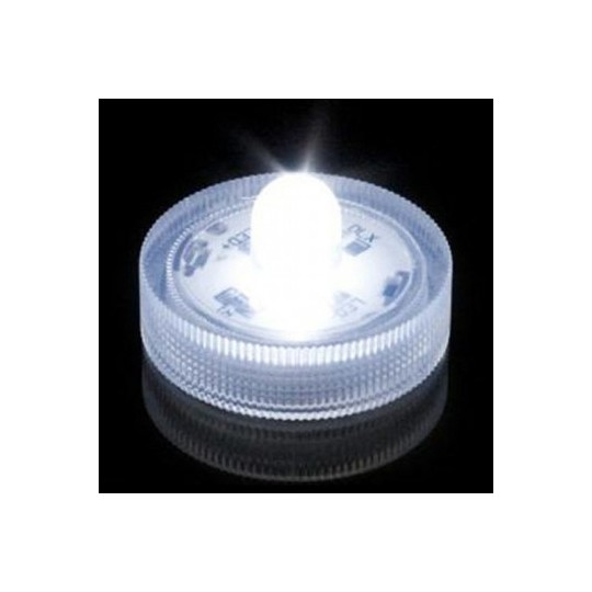 Leds submersibles blanches
