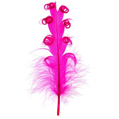 Plumes tortillons couleur fuchsia.