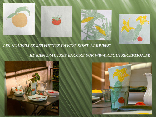 NOUVELLE COLLECTION SERVIETTES PAVIOT